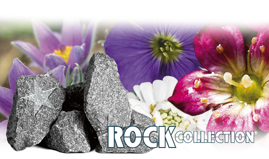 Rock Collection: About us